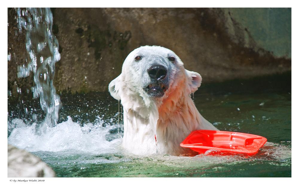 Endlich wieder Badewetter !