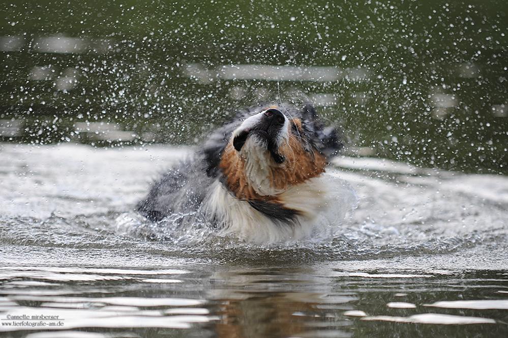 Endlich wieder Badewetter!