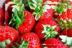 Endlich wieder Erdbeeren...