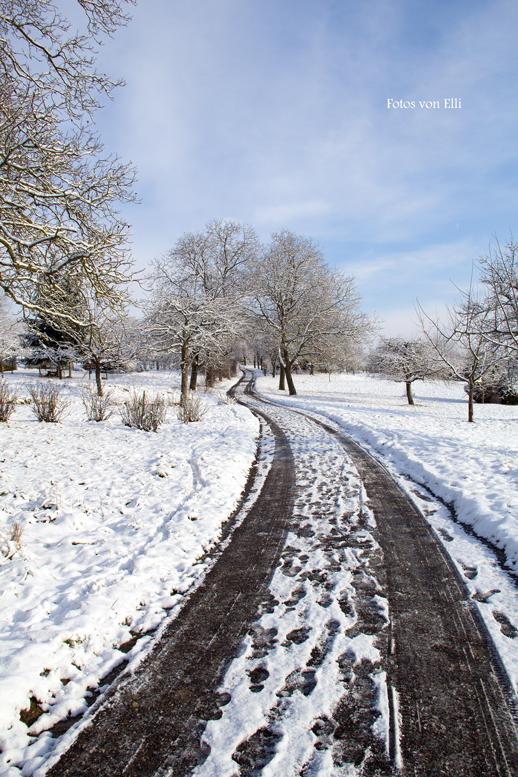 Endlich Winter ... (1)