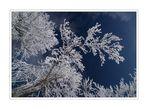 Endlich Winter #5