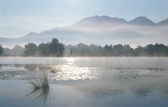 Endsommer-Nebel