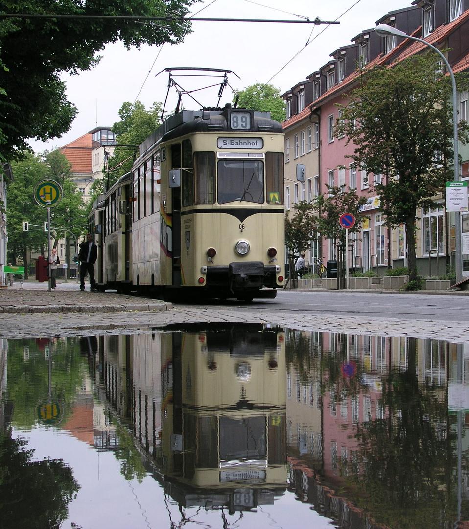 Endstation Lustgarten