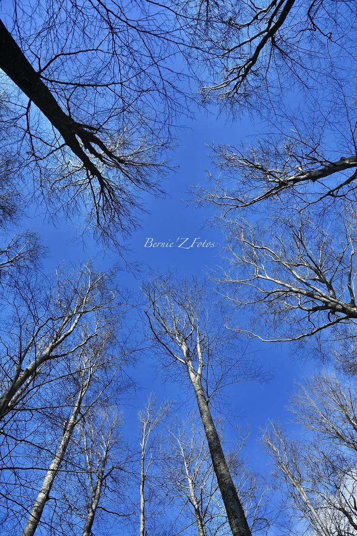 Enfin un peu de ciel bleu