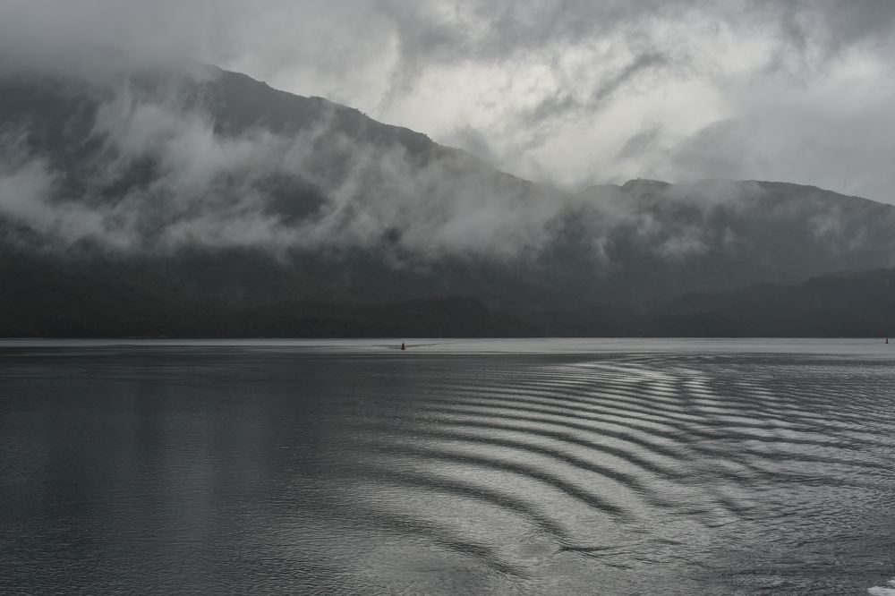 Enge Fjorde                                    DSC_5876-2