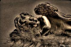 Engel auf Erden
