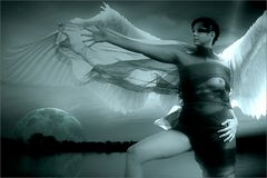 Engel der Nacht.....