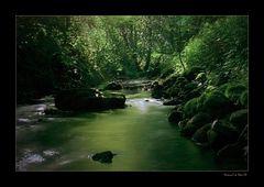 Engel des Wassers (2)
