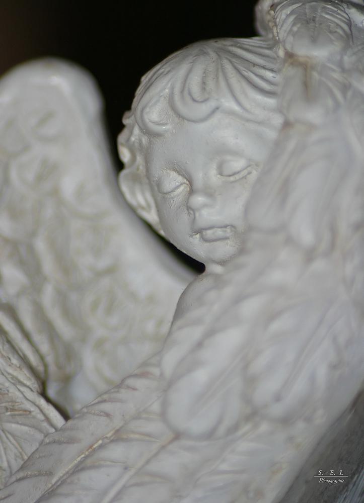 """""""Engel fliegen einsam Serien-Ende"""""""