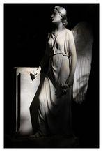 Engel im Schatten