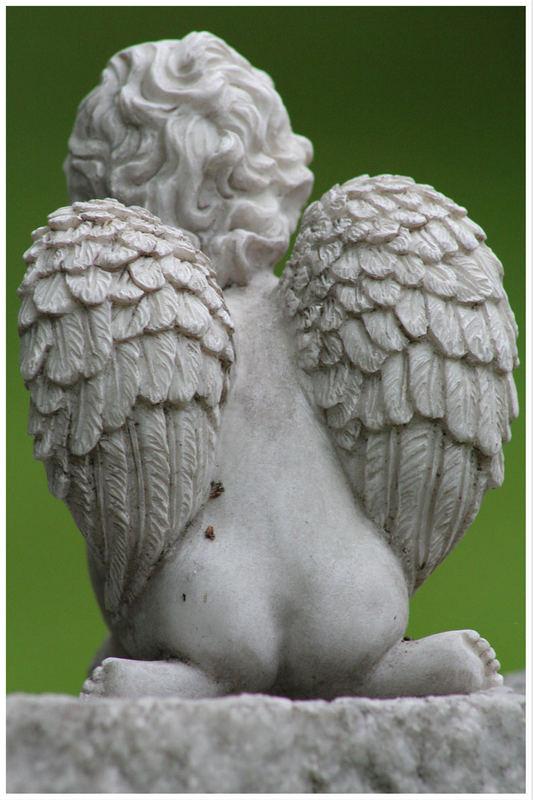 Engel können fliegen,weil sie sich selber nicht so schwer nehmen.