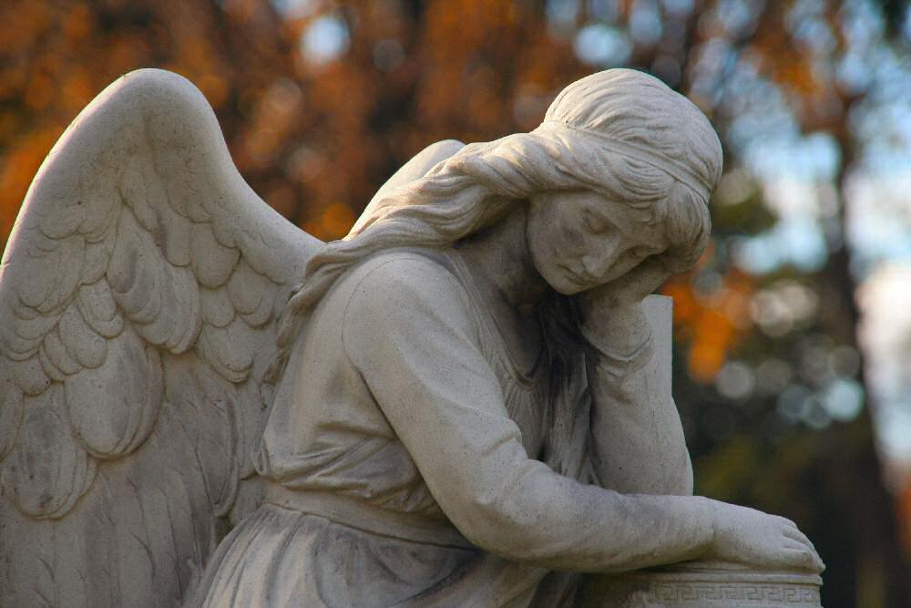 Engel Nr.6