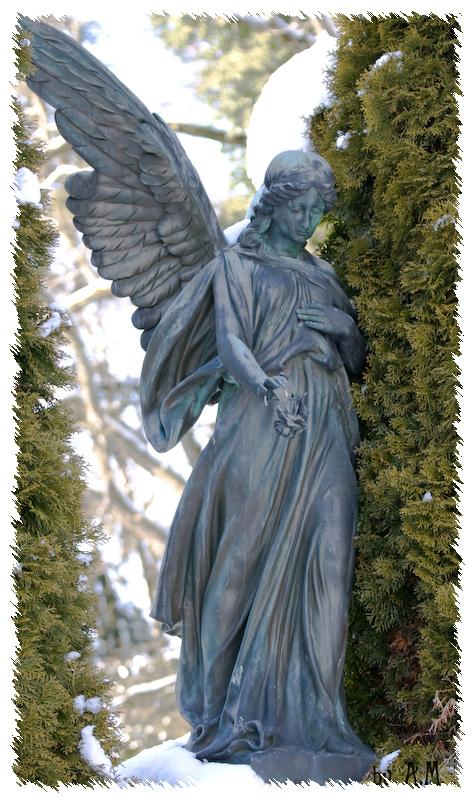 Engel sind so einsam