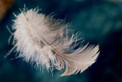 Engelchen vorbeigeflogen
