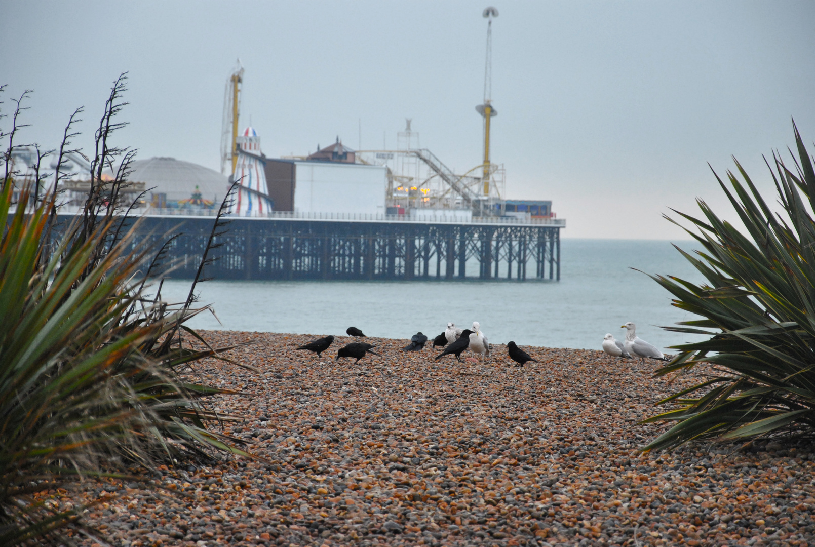 England Winter 2010