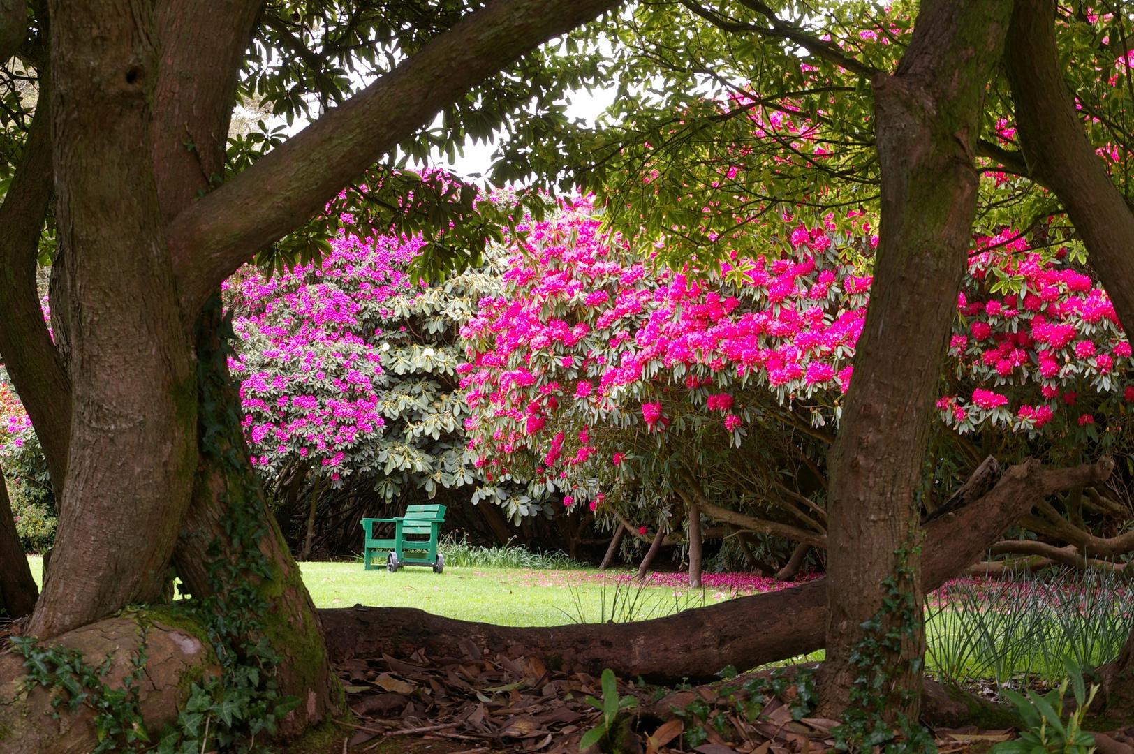 Englische Gärten 4