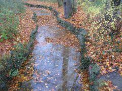 Englischer Garten - Kanal