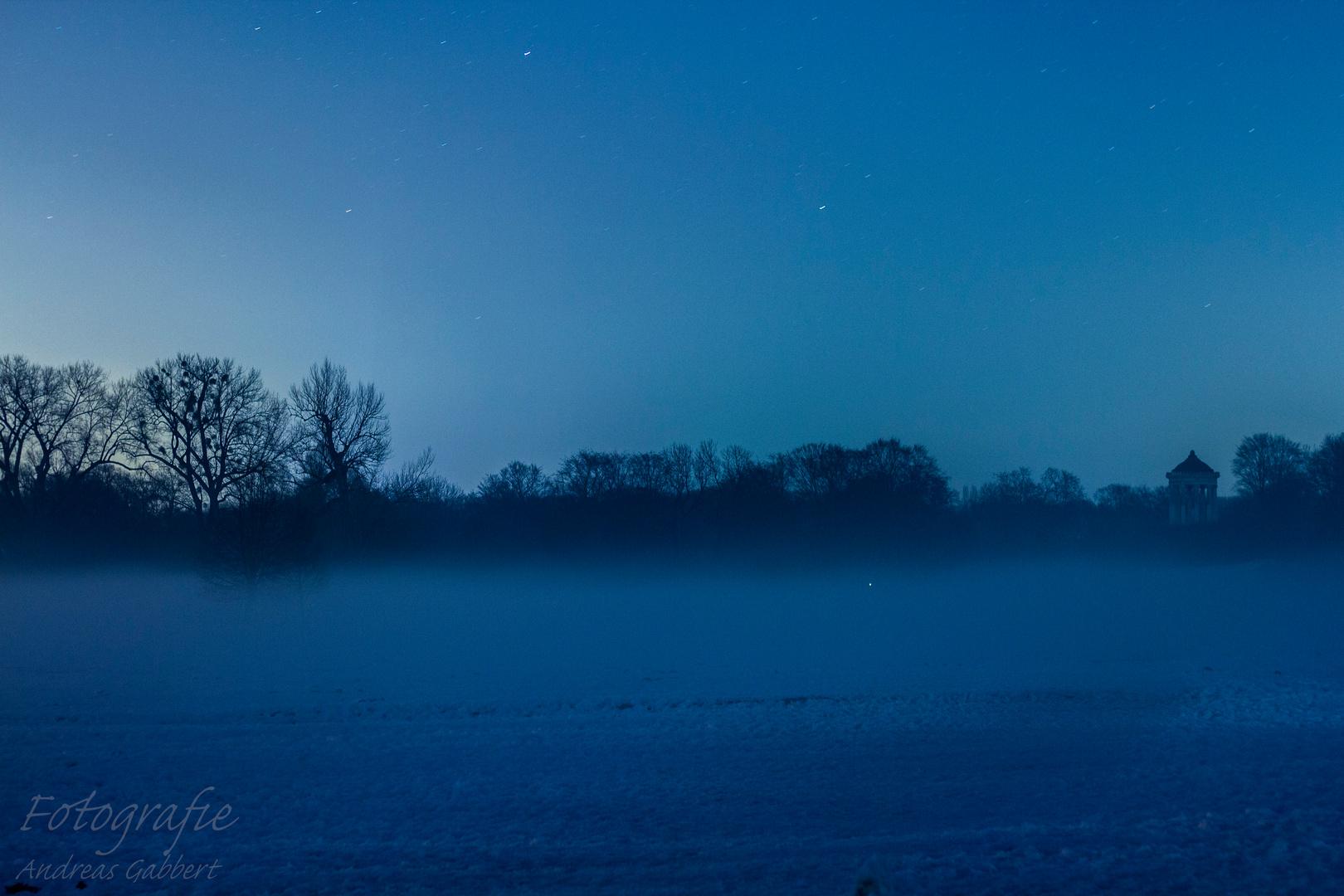 Englischer Garten Nebel