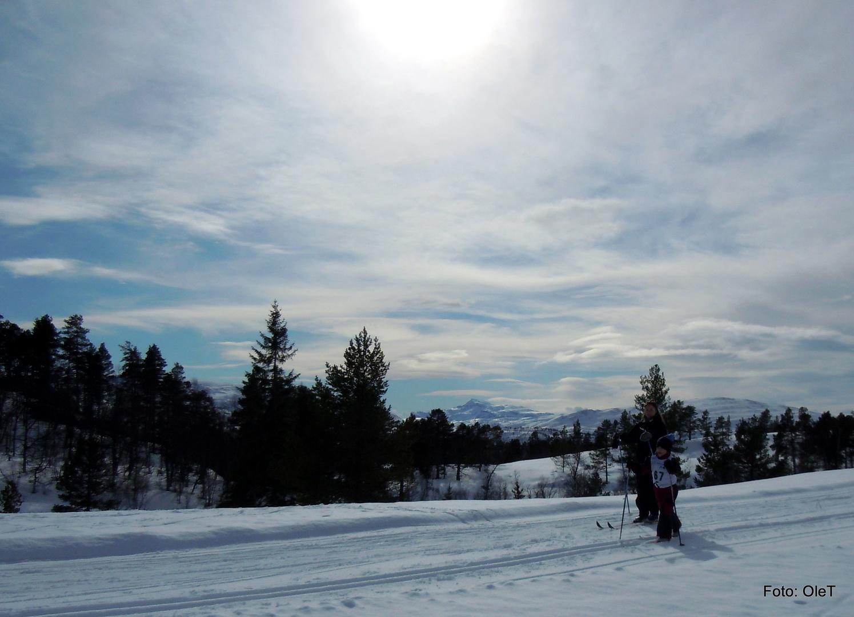Enjoying skiing