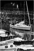 Enjoying Some Late Summer Sunshine - A Granville Island Moment