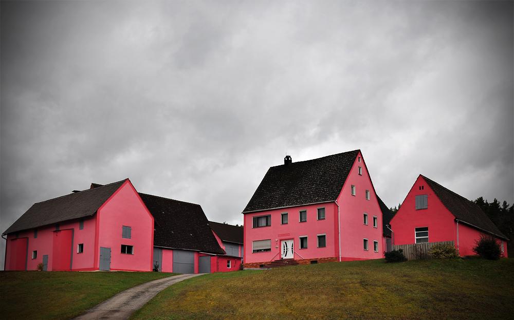 Ensemble in Pink