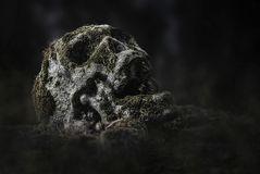 Entdeckt auf einem Friedhof in Belgien