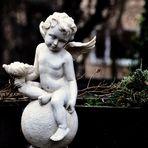Entdeckung bei einem Spaziergang , der kleine Engel....