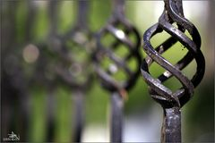 Entre les barreaux
