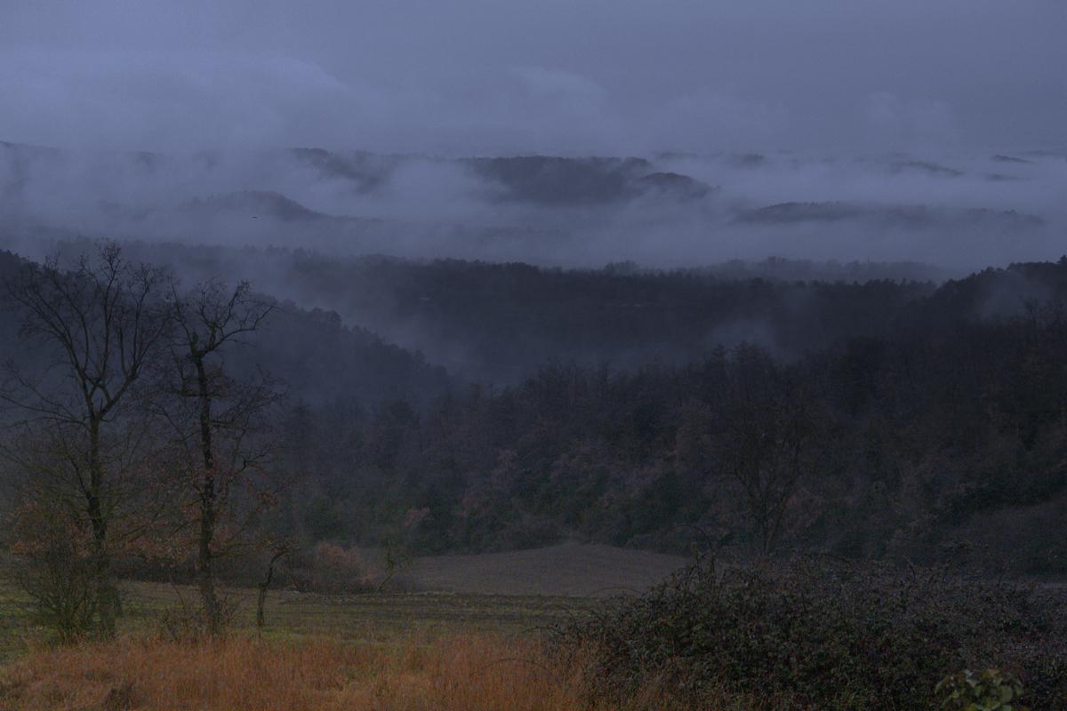 entre nieblas