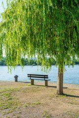 Entspannung am Rhein 76