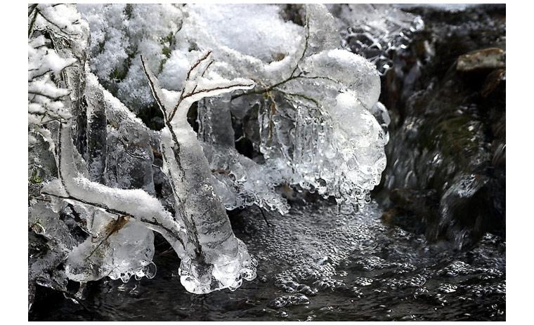 epoca glaciale2