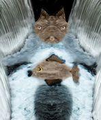 Er ist Wassermann und ich bin Fisch...