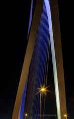 Erasmusbridge/Rotterdam