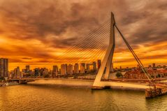 - Erasmusbrücke -
