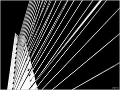 Erasmusbrücke III