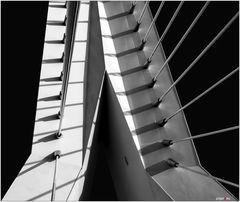 Erasmusbrücke VIII