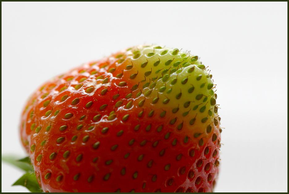 Erdbeer-Arktis