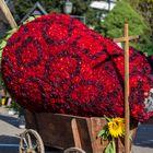 Erdbeere im Handwagen (Alles aus Dahlien gemacht)
