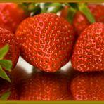Erdbeeren – Das schmeckt nach Sommer.