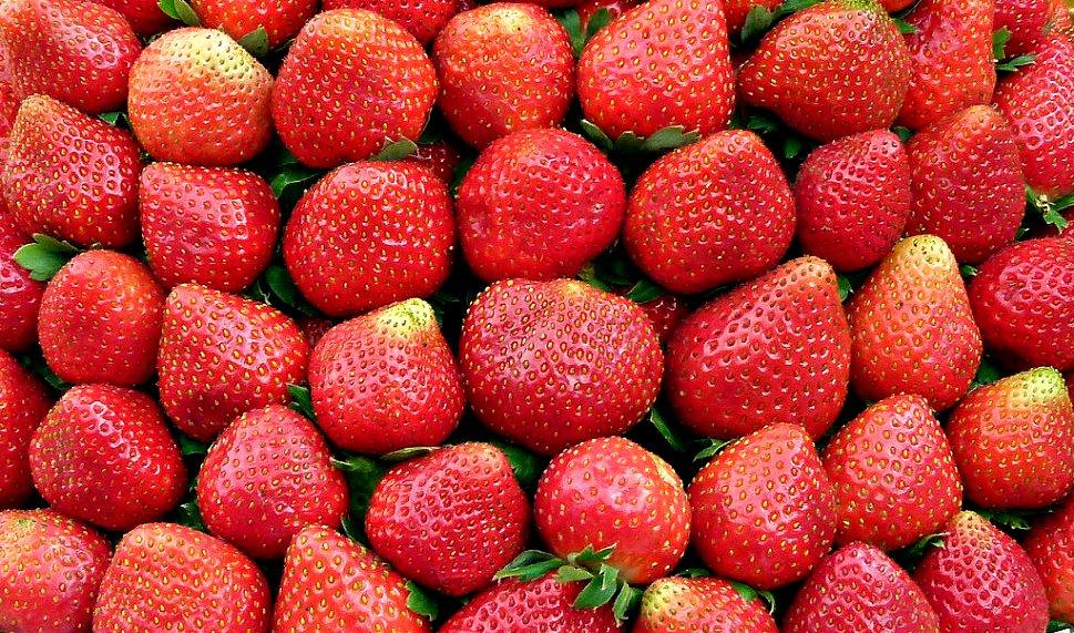 Erdbeeren...lecker!