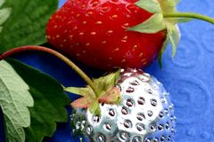 Erdbeermutation