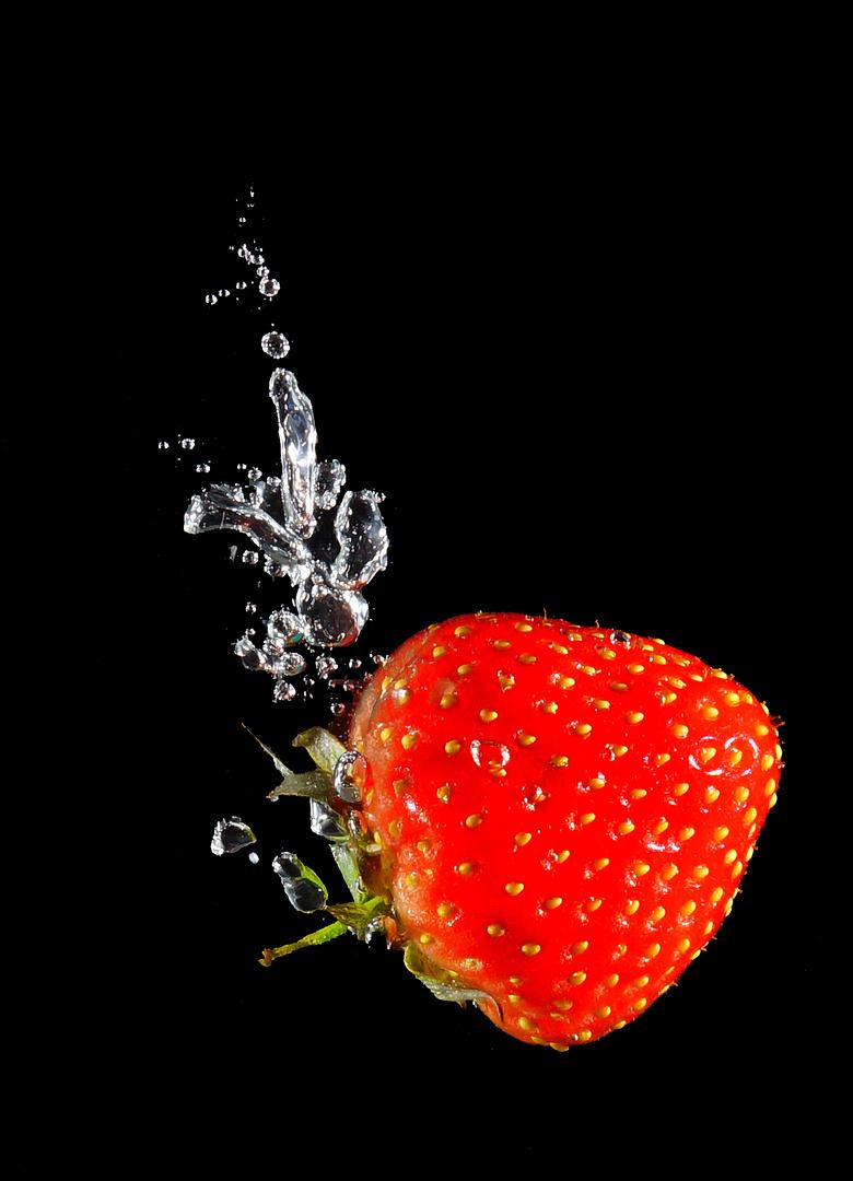 Erdberre im Wasser