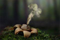 erdstern_smoke