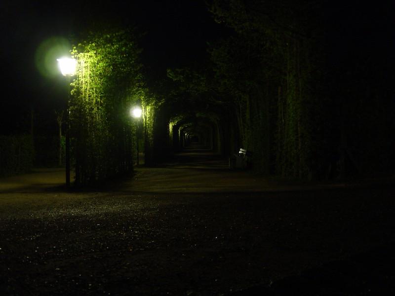Eremitage bei Nacht