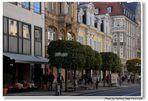 Erfurt, schöne Häuser (casas bonitas)