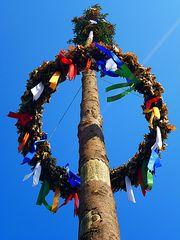Erinnerung an den Maibaum