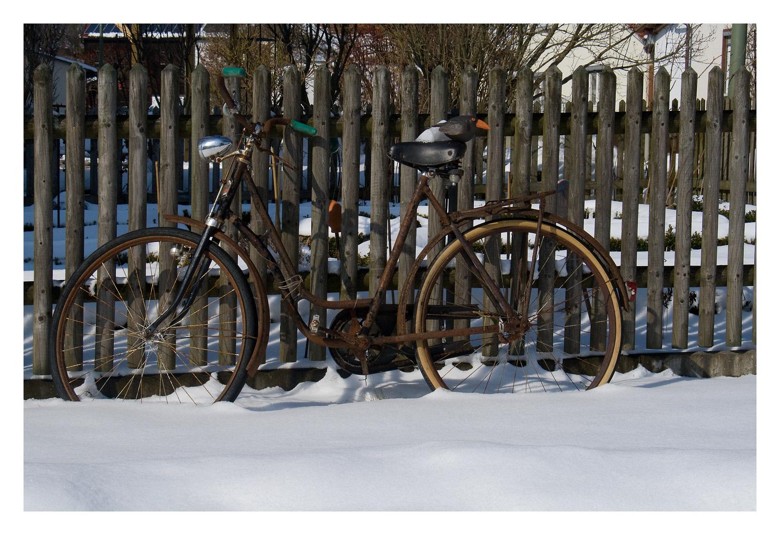 Erinnerung an den vergangenen Winter