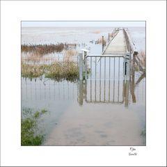 Erinnerung an eine Weihnachtsflut vor genau 300 Jahren