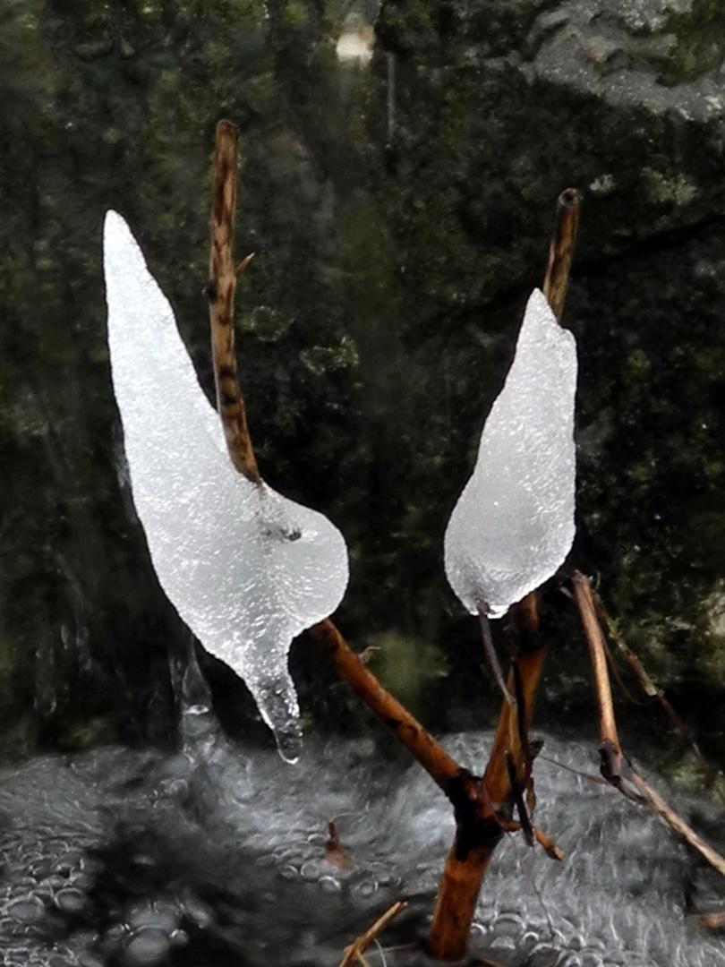 Erinnerung an kalte Wintertage im letzten Jahr