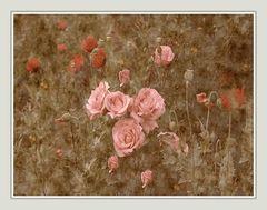 Erinnerung an meinem Garten